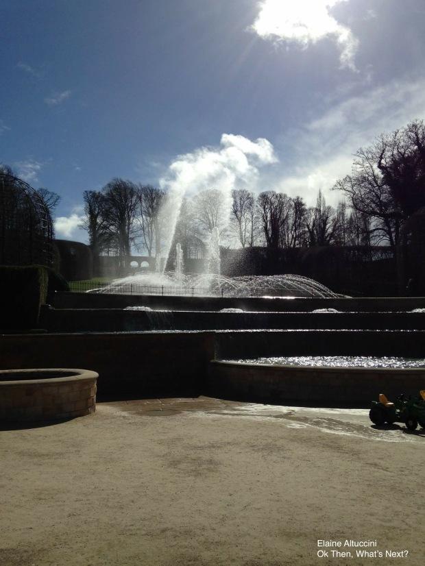 alnwick garden 5
